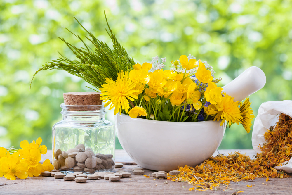 Flowers, leaves, and seeds of different herbs outside on a table