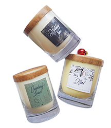 Natura Soy Candle stocking stuffers