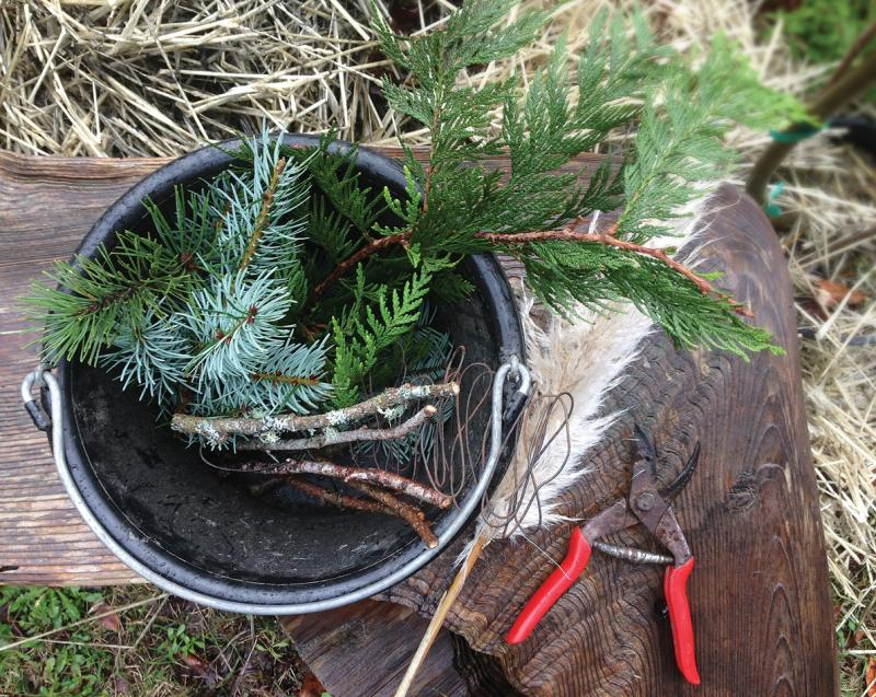 bucket of evergreen branches