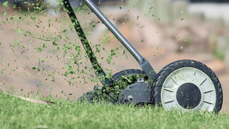 hand mower making grass clippings fly
