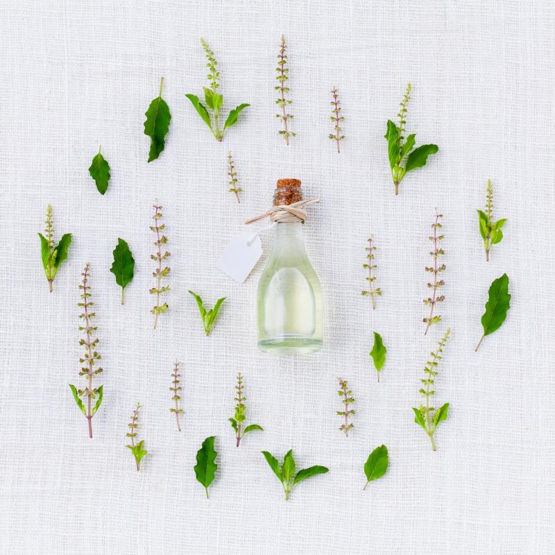 herbs surrounding a bottle of essential oil