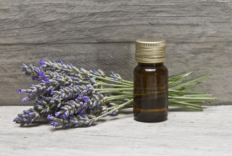 Lavender and essential oil on an old wooden shelf.
