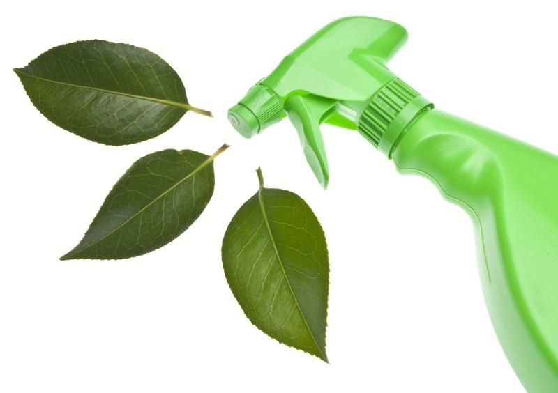 green spray bottle with leaves emanating from sprayer