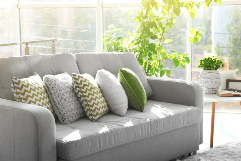 grey couch with green cushions in a sunny room with plants