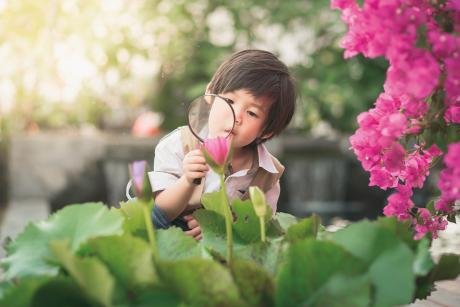 young child looking at plants with magnifying glass