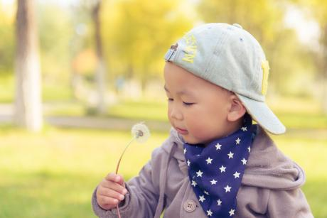 tiny child looking at dandelion