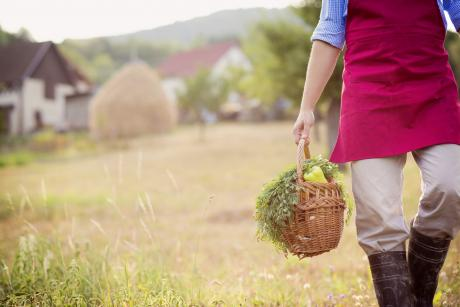 farmer carrying basket of produce and herbs