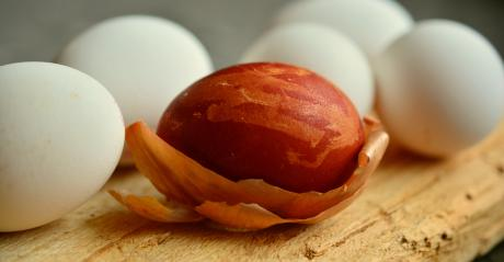 egg dyed with onion skin
