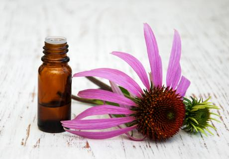 medicine jar next to echinacea flower