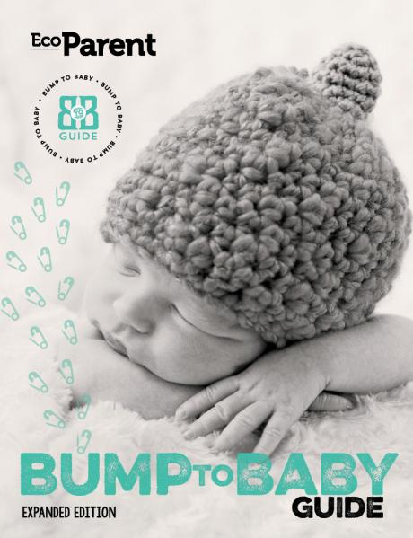 Bump to Baby Guide Cover